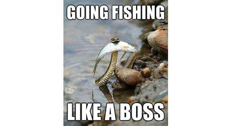 top  fishing memes   internet