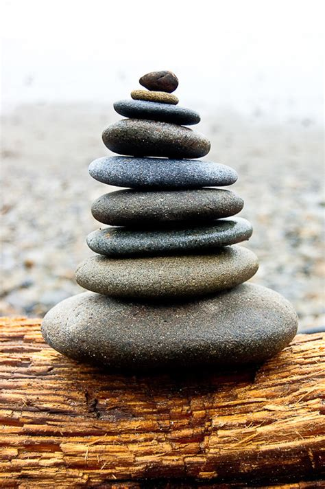 stacked rocks zen in balance cairnes stacked rocks on washington by terravision
