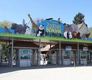 Billet Zoo De Beauval Leclerc : le plus beau zoo de france zooparc de beauval ~ Medecine-chirurgie-esthetiques.com Avis de Voitures