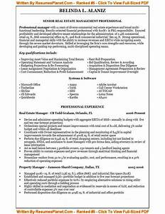 theresumewritingexpertscom an example of their resume With the best resume writers