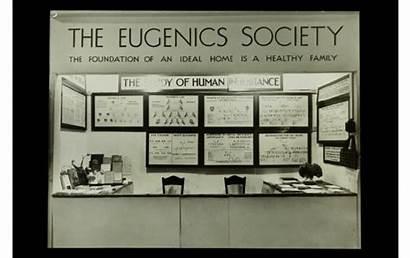 Eugenics Galton Greatgameindia Reply