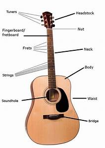 Acoustic Guitar Parts Name Strings