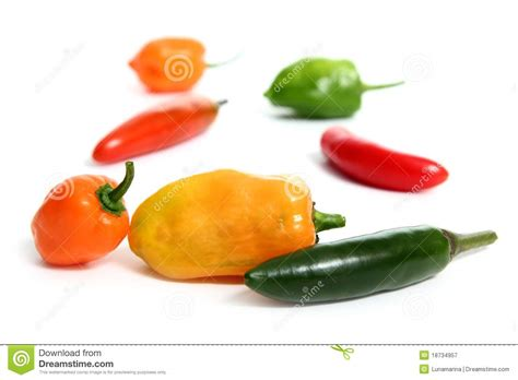 Chili Habanero Serrano Hot Mexican Peppers Royalty Free