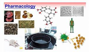 Laboratory  Department Of Chinese Pharmaceutical Sciences And Chinese Medicine Resources  China