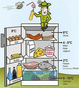 Kühlschrank Temperatur Zu Hoch : k hlschrank welche temperatur ist ideal haushaltstipps hacks f r daheim haushalts tipps ~ Yasmunasinghe.com Haus und Dekorationen