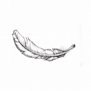 drawing feather - Εικόνες Google | We Heart It | feather