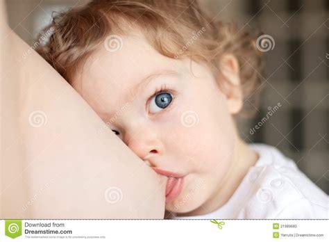 Breast Feeding Stock Photo Image 21989680