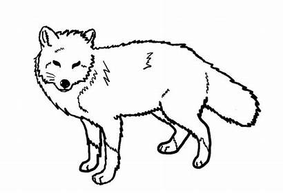 Fox Coloring Pages Printable Animal Drawing Line