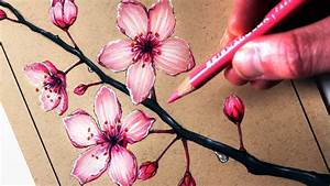 Sakura Flower Drawing Easy How To Draw A Sakura Cherry ...