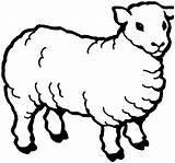 Coloring Sheep Pages Printable Animal Cute sketch template