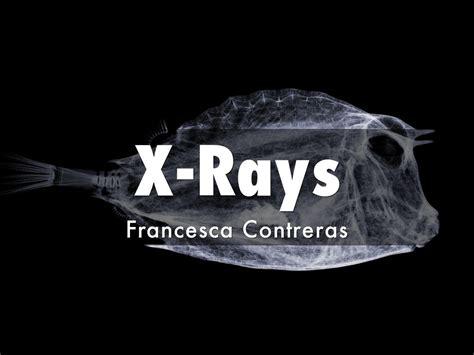rays copy