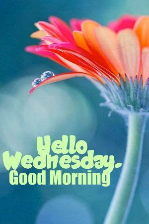 wednesday good morning pictures   images