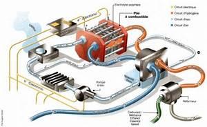 Pile à Combustible Voiture : fonctionnement d 39 une pile combustible blog de ren7707 ~ Medecine-chirurgie-esthetiques.com Avis de Voitures
