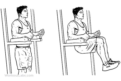 chair leg raises with medicine captain s chair leg knee hip raises workoutlabs