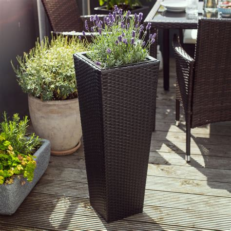 planter des renoncules en pot 3 x flower pot set rattan style planter plant polyrattan vase black insert ebay