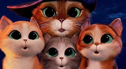 Three Diablos Puss Boots Eyes Gifs Cat