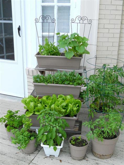 Window Sill Garden Vegetables by 104 Best Garden In The Window Images On