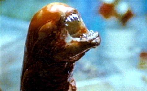 plumber  birth  twin  scene reminiscent  alien telegraph