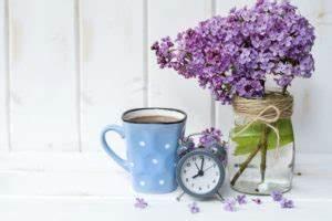Welche Blumen Blühen Im August : berblick wann bl hen welche blumen ~ Orissabook.com Haus und Dekorationen