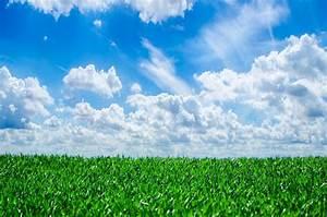 Rasen Düngen Bei Sonne : kostenlose foto natur gras horizont wolke pflanze himmel sonnenschein sonne feld ~ Indierocktalk.com Haus und Dekorationen