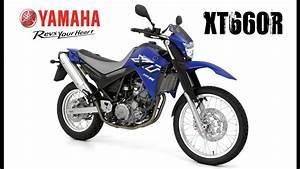 Yamaha Ns 555 Test : xt660r ewerton ~ Kayakingforconservation.com Haus und Dekorationen