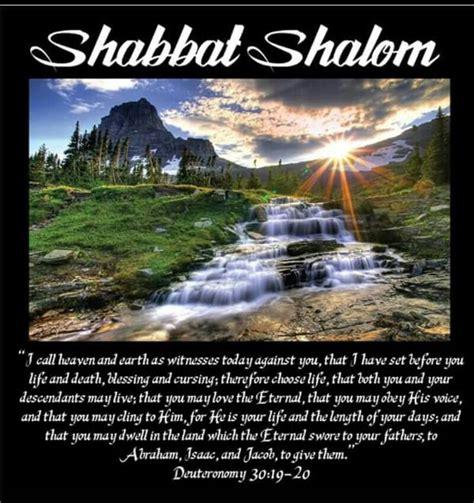 images  shabbat shalom  pinterest menorah
