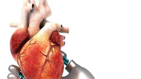 A Glimpse Into The Future Of Cardiac Surgery  Latest News