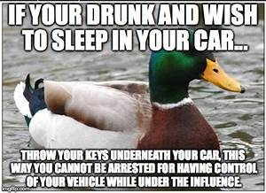 Actual Advice Mallard Memes (latest) - Imgflip