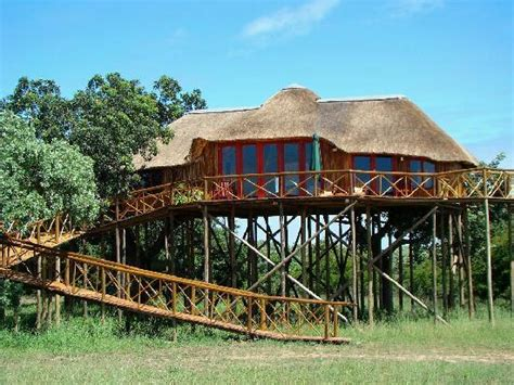 Pezulu Tree House Game Lodge (south Africa/hoedspruit