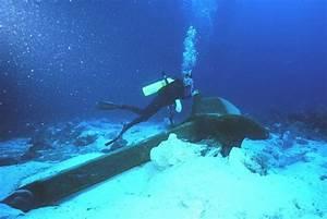 Submarine Fiber Optic Cable