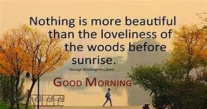 Enjoy the beaut... Beautiful Morning Wish Quotes