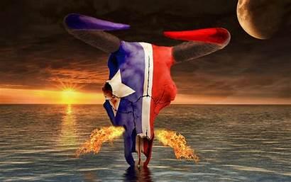 Texans Houston Football Team Nfl Wallpapers Sports