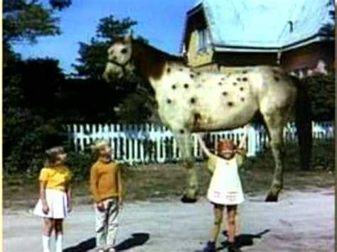 pippi langstrumpf und das pferd hostet im ts bei smokeymoe