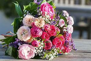 Bilder Von Blumenstrauß : shoppen auf juist spielwaren zeitungen b cher blumen ~ Buech-reservation.com Haus und Dekorationen