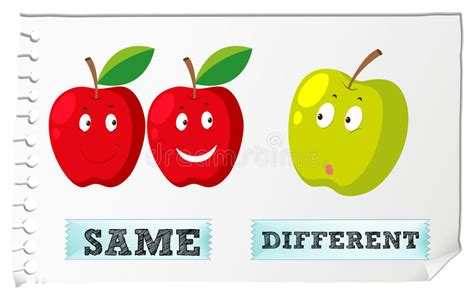 Opposite Adjectives With Same And Different Stock Vector  Illustration Of Graphic, Grammer