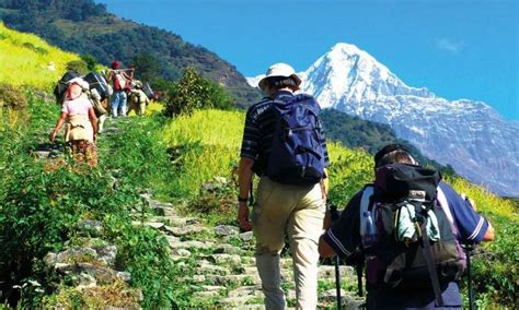 Government Preparing to Gradually Reopen Tourism Industry ...