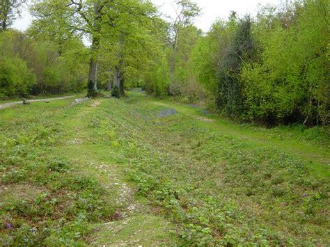 K Janine File Slindon Estate Park Pale Geograph Org Uk 166121