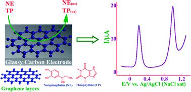 graphene layer modified glassy carbon electrode   determination  norepinephrine