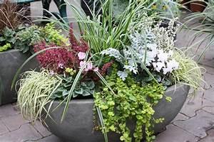 Kübel Bepflanzen Winterhart : herbstzauber attraktive bepflanzung f r k bel und k sten ~ Whattoseeinmadrid.com Haus und Dekorationen