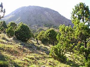 File:Tajumulco volcano 01.jpg - Wikimedia Commons