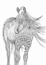 Coloring Horse Adult Pages Adults Animals Colouring Amazing Books sketch template