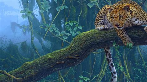 amazon rainforest jaguar animal wallpaper hd johnywheels