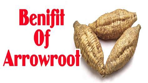 Amazing Benefits of Arrowroot Powder - Benifit Of ...
