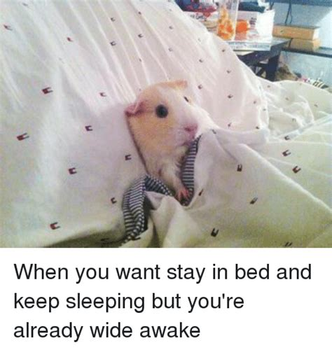 Stay In Bed Meme - stay in bed meme 28 images funny rainy memes of 2017 on sizzle getting lost meme creator