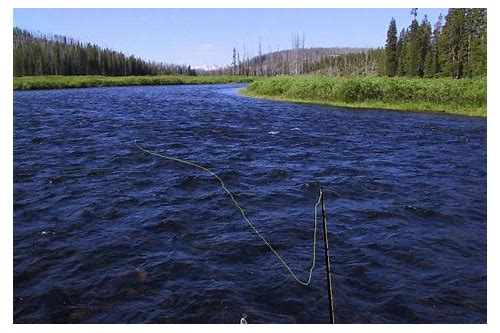 real world fly fishing game free download