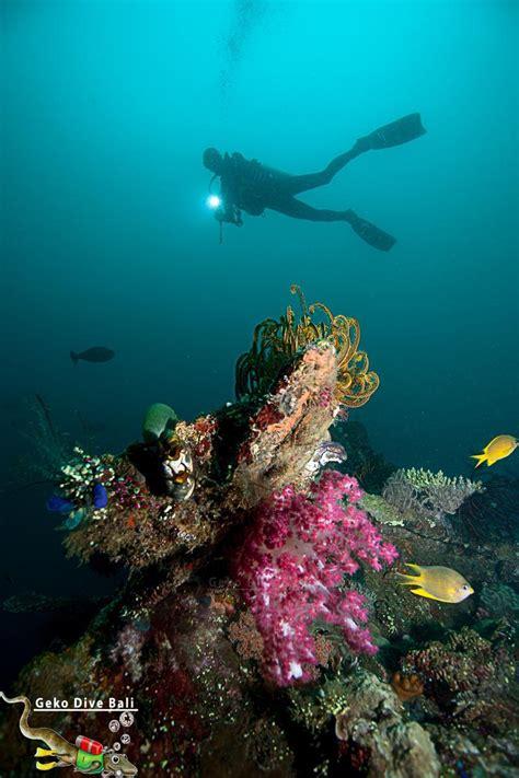 Shipwreck Bali by Scuba Dive The Usat Uss Liberty Shipwreck In Tulamben Bali