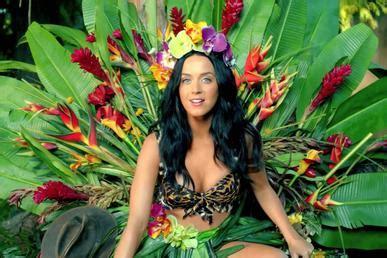 Katy Perry 'roar' Cake