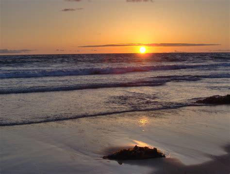 Yuccabloom Memoir Meaningful Meanderings San Diego