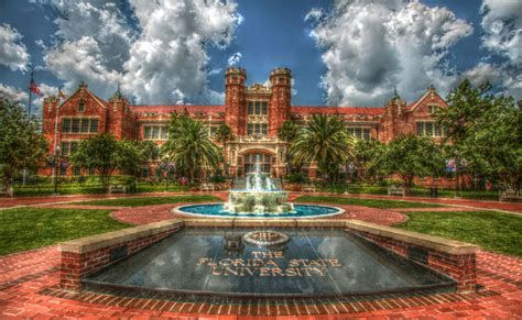ultimate guide  fsu financial aid society