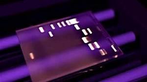 Electrophoresis And Gel Analysis